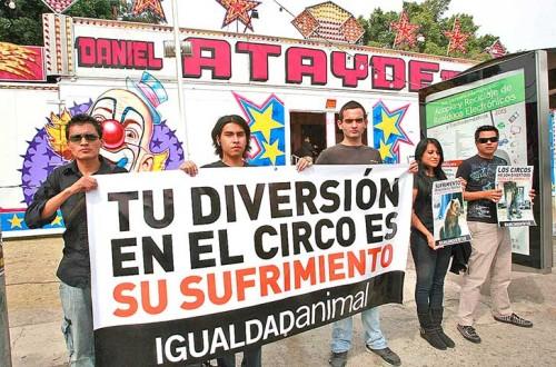 protesta-circo-pag-7-1