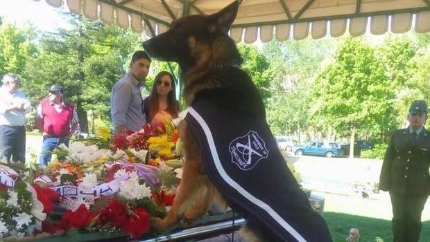 jerjes-perro-funeral
