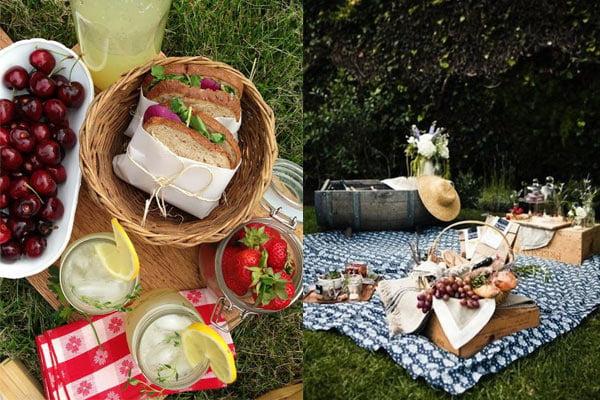 platos para picnic good da de campo with platos para